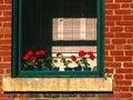 Window in Historic Building 2