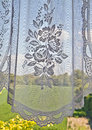 Window with lace curtain a look outside through the glass and a vintage floral Stock Photography
