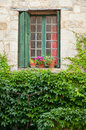Window and leaves wiindow with flower pots Stock Photos