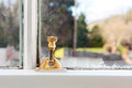 Window lock brass screw on an old fashioned in a house Stock Photo