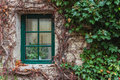 Window overgrown with ivy old wooden in fall colors czech Royalty Free Stock Photos