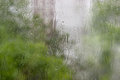 Window pane during a downpour background from streams and drops of water on and blurred foliage through the glass Royalty Free Stock Images