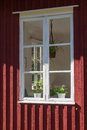 Window potted plants cottage Stock Photography