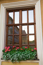 Window and red flowers on the window sill with city reflection Royalty Free Stock Image