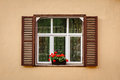 Window with shutters and flower at beige wall Stock Image