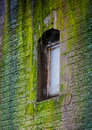 Window in a wall covered with moss old brick Royalty Free Stock Photos