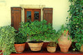 Window with wood shutters and flower pots (Crete, Greece) Royalty Free Stock Photo