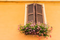 window with wooden shutters and  geraniums Royalty Free Stock Photo