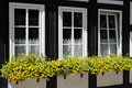 Windows with flower boxes Royalty Free Stock Photo