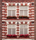Windows with flowers in amsterdam netherlands Royalty Free Stock Photos