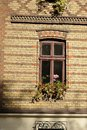 Windows with flowers brick house wooden frame and vases of Royalty Free Stock Images