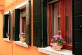 Windows and flowers in burano island in venice Royalty Free Stock Photos