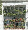 Windows with flowers located in the spanish village of pampaneira in a sunny day Royalty Free Stock Image