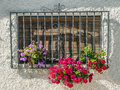 Windows with flowers located in the spanish village of pampaneira in a sunny day Royalty Free Stock Photography