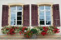 Windows with flowers two rustic many colored Stock Photos