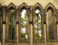 Windows of gothic cathedral Royalty Free Stock Photo
