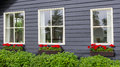 Windows of a tradtional wooden house with red flowers and grey geranium in front Stock Photo
