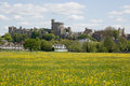 Windsor Castle and Buttercup Meadow Royalty Free Stock Images