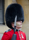 Windsor castle gaurd a stands guard at in england Royalty Free Stock Photos