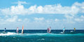 Windsurfers in windy weather on Maui Island panorama Royalty Free Stock Photo