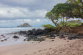 A Windswept Maui Beach Royalty Free Stock Photo