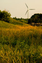 Windturbine meadow in the overgrown natural with a cairn Stock Photos
