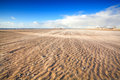 Windy sand beach north sea holland Stock Photos