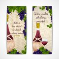 Wine banners vertical jar glass and grape branches decoration set vector illustration Stock Photos