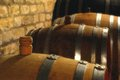 Wine barrel in the cellar Stock Image