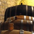 Wine barrel in the cellar Royalty Free Stock Photo