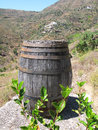 Wine barrel tenerife island canaries Stock Image