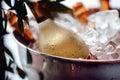 Wine bottle in ice bucket Royalty Free Stock Photo