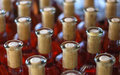 Wine bottles cabernet franc rose of in rows in hungarian cellar Stock Photography