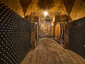 Wine bottles and oak barrels stacked in a winery cellar Stock Photos