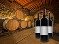 Wine bottles with oak wine barrels stacked in a winery cellar red in foreground Royalty Free Stock Photos