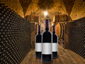 Wine bottles with oak wine barrels stacked in a winery cellar red in foreground and on the sides Royalty Free Stock Image