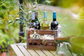 Wine bottles in a wooden crate bottle vintage decorated with olive branches Stock Images