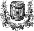 Wine cask and grapevine vector image of a sketch of an old Royalty Free Stock Photo