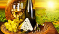 Wine and cheese romantic dinner outdoor Royalty Free Stock Photos