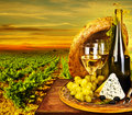 Wine and cheese romantic dinner outdoor Royalty Free Stock Photography