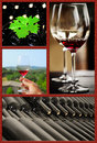 Wine collage beautiful set of images Royalty Free Stock Image