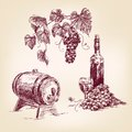Wine collection hand drawn vector illustration vintage Stock Photo