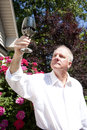 Wine Connoisseur Royalty Free Stock Photo