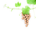 Wine corks grape shape and vine Royalty Free Stock Photo