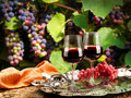 Wine enjoy tasting doc to any occasion Royalty Free Stock Image