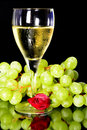 Wine glass and green grapes a rose reflection on objects in vertical position Royalty Free Stock Image