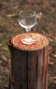 Wine glass on a log Stock Photos