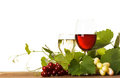 Wine in glass red and white over wooden table Royalty Free Stock Photo