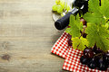 Wine and grape close up image Stock Images