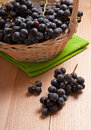 Wine grapes in basket merlot on wooden table Stock Photography